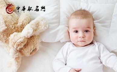 属猪宝宝起名